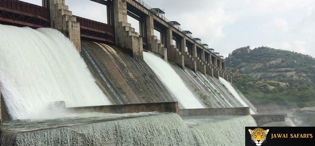 Jawai Dam picture